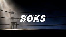 Boksörlerimiz Ahmet Cömert Boks Turnuvası'nda ringe çıkıyor